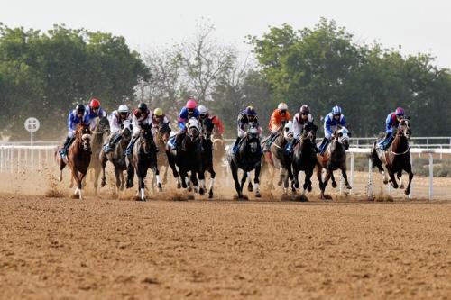 SDEA151212-horseracing04