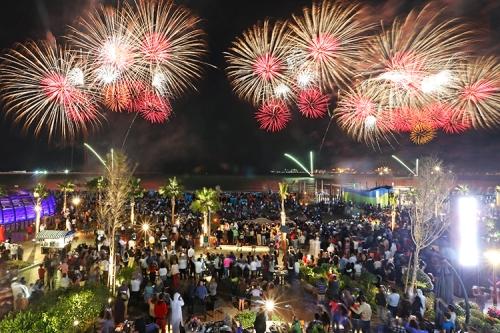 xSDEA021114-fireworks_thebeach03