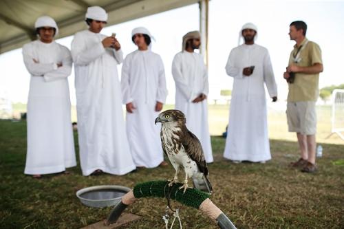 xSDEA111214-falcon_festival13