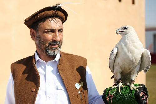 xSDEA111214-falcon_festival_pakistan01